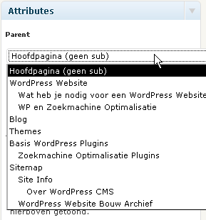 Subpagina in WordPress maken