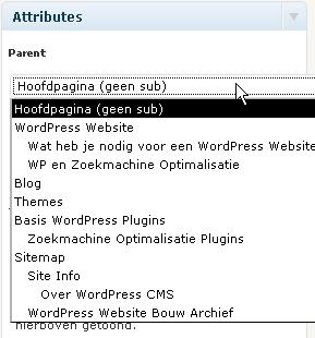 Subpagina in WordPress maken