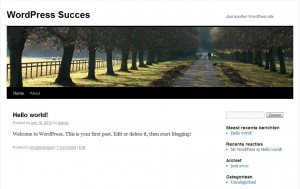 Je nieuwe WordPress website is klaar voor gebruik