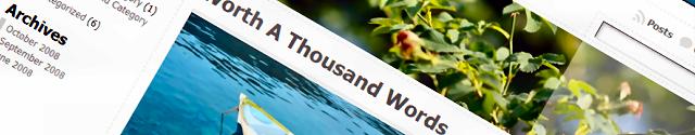 WordPress Themes - De Layout van je Website