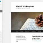 WordPress Twenty Eleven Preview en Configuratie